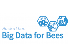 Big Data for Bees