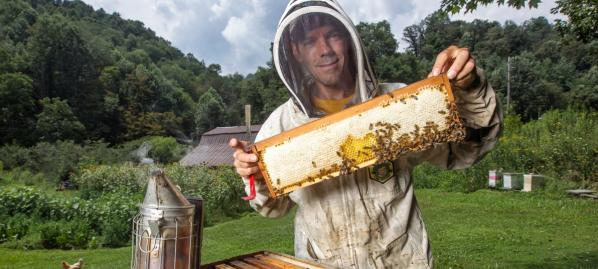 Beekeeper Dr. James Wilkes '87, chair of Appalachian's Department of Computer Science, manages 100 bee colonies on his family farm. His scholarly research, conducted in part with Dr. Joe Cazier and Dr. Ed Hassler, includes tracking and analyzing beekeeping management practices. Photo submitted