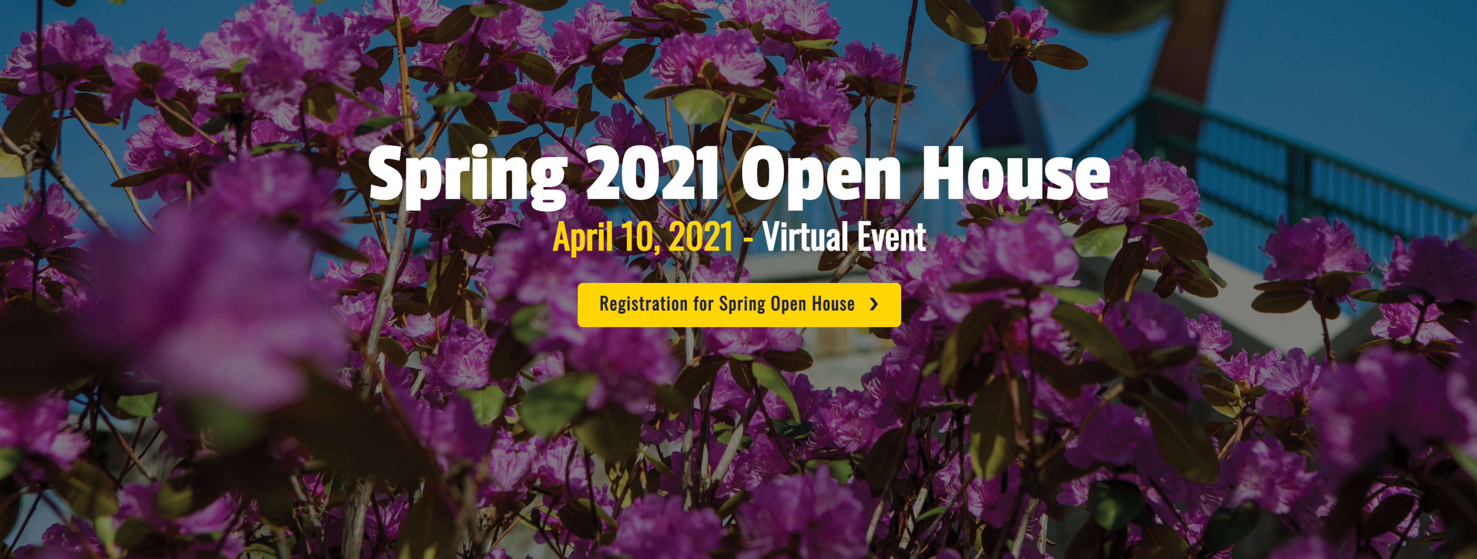 Spring 2021 Virtual Open House - Office of Admissions
