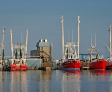 The sun sets on shrimp and fishing boats dock along Raccoon Creek in Oriental.