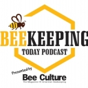 World Bee Count with James Wilkes and Joseph Cazier