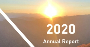 Bowden Investment Group releases 2020 annual report