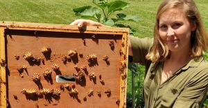 Appalachian named one of nation's 61 Bee Campuses